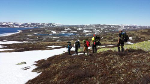 leiderschapsreis-noorwegen-sierd-nutma-Hike